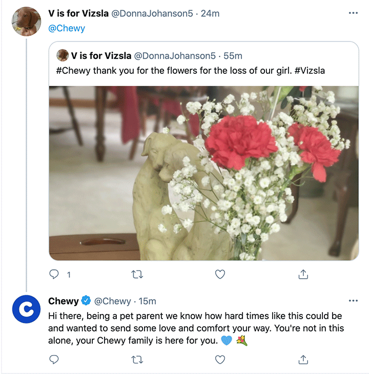 Chewy-social-media